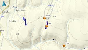 Trail on Mt. Pleasant Brook